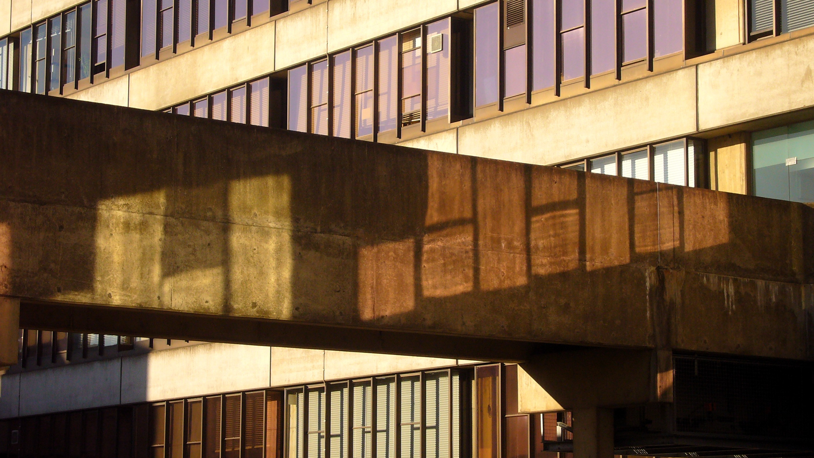 UEA, teaching wall 5. Photo: Flickr, Harry Harris.