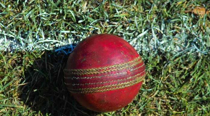 Cricket ball. Photo: wikipedia, Ed g2s