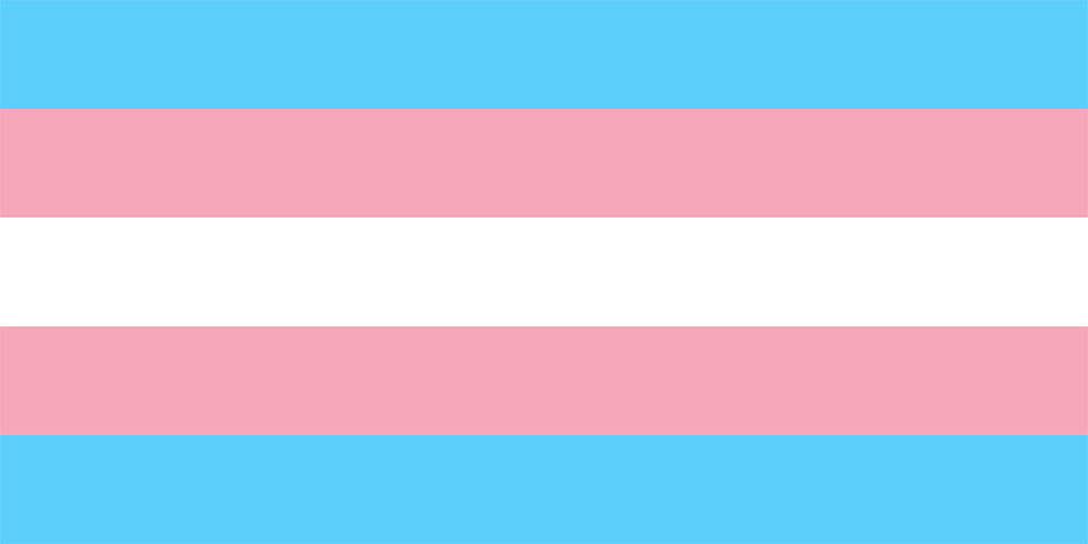 transgender pride flag, wikipedia.org Dlloyd based on Monica Helms design