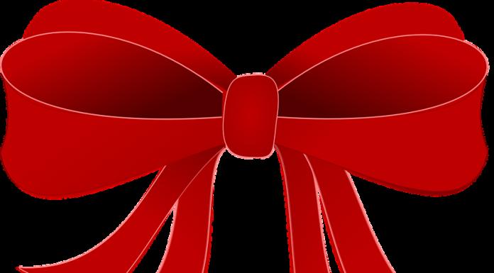 public domain image from pixabay