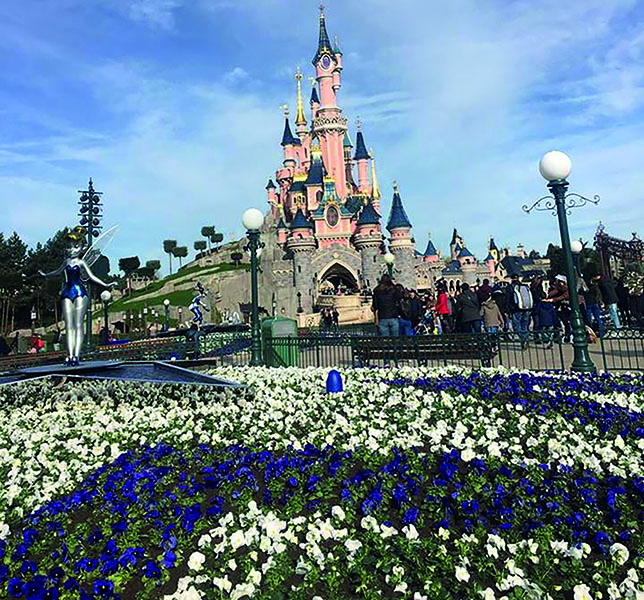 Disney castle, Ellie Budge