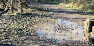cringleford mud matt nixon