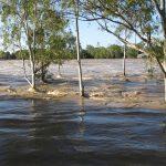flood by joojoo41 on pixabay