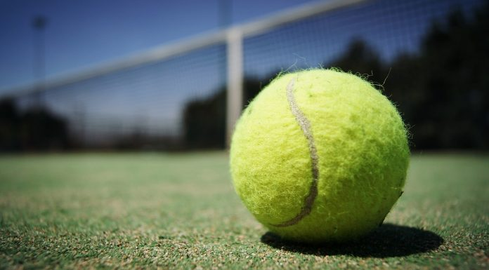 tennis ball by skeeze on pixabay