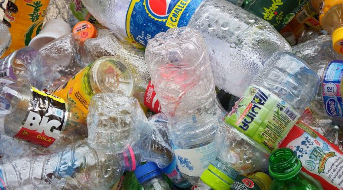 recycled plastic bottles by Ian L on public domain pictures