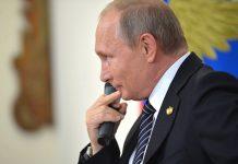 Putin, spy, whale