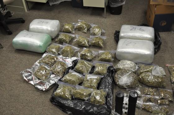 Drug trafficking hastens the destruction of the rainforest