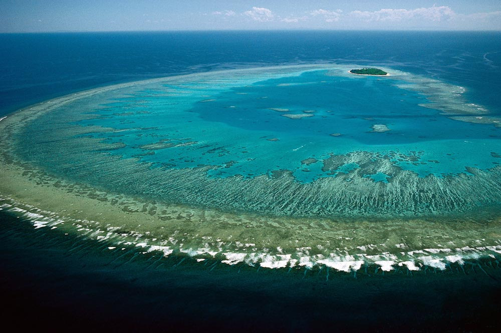 Great Barrier Reef. Photo: Flickr, Lock The Gate Alliance.