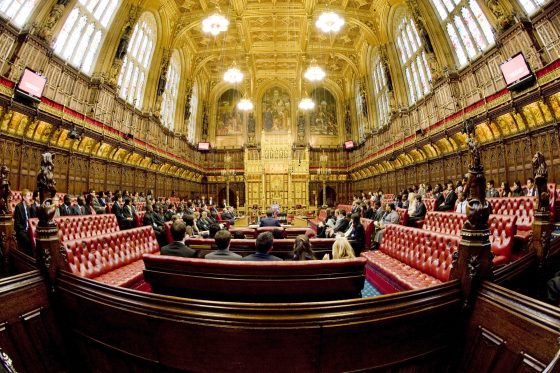 TEF and fees separated by Lords