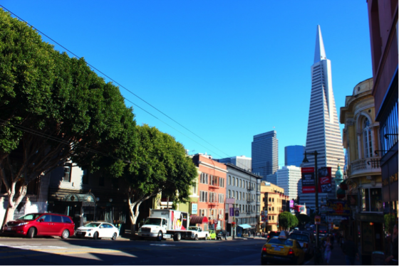 A Year abroad in San Francisco