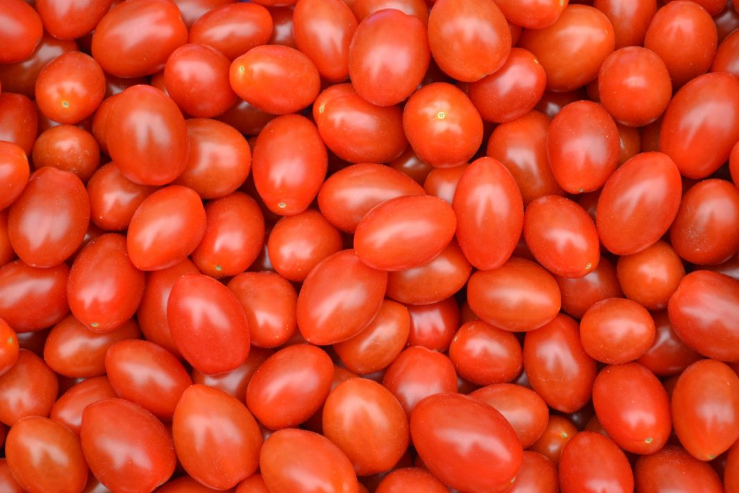 tomatoes by colin bedson on publicdomainpictures.net
