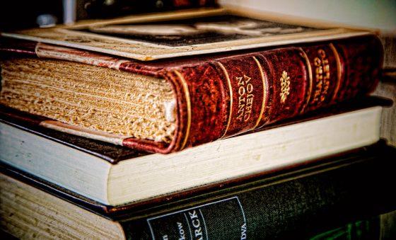 UEA Literary Festival, Isabel Allende