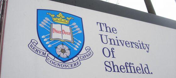 Sheffield's anti-racism plan 'just won't work'