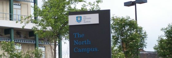 Sheffield University to pay students to tackle racism
