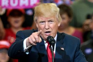 Trump, President, United States, Coronavirus