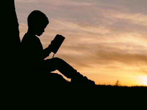 Diversity in children's literature